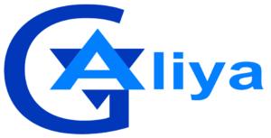 Global Aliay logo